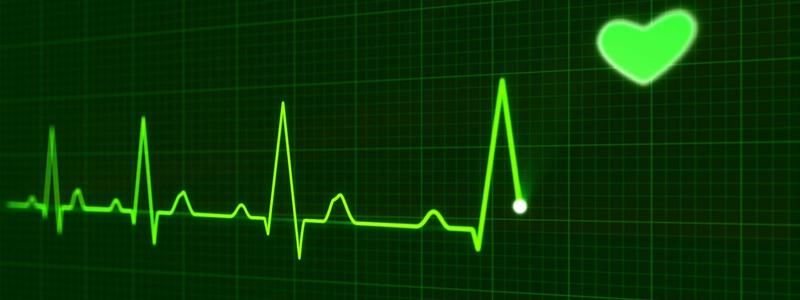 heart-800x300